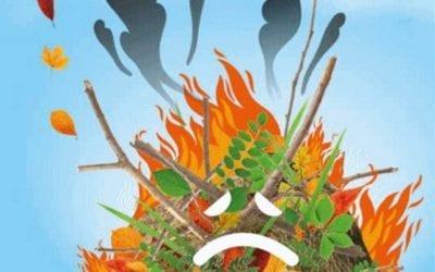 Brûlage des déchets verts